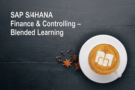 SAP S/4 HANA Finance & Controlling Onlinekurs