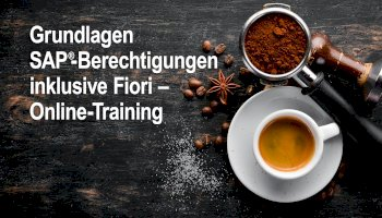 Grundlagen SAP Berechtigungen inklusive FIORI - Online Training